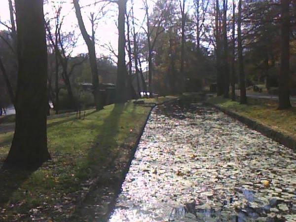 Fall Tour 2009 - Hagley-Longwood Gardens