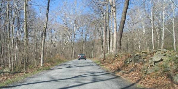 Spring Tour Drive
